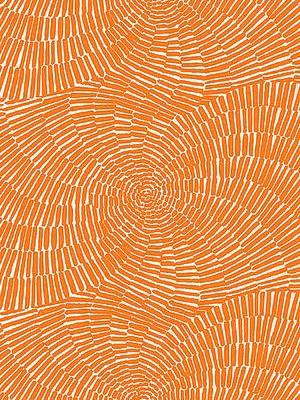 Schumacher 174241 Sonriza Print Orange Outdoor Fabric