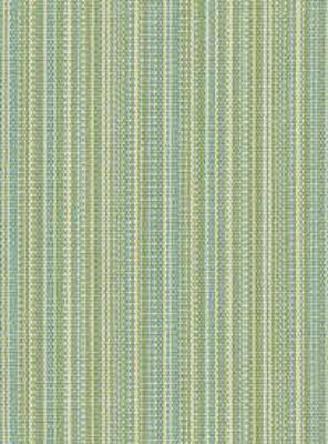 Kravet 30839-315 Outdoor Upholstery Fabric Mazed - Citrus