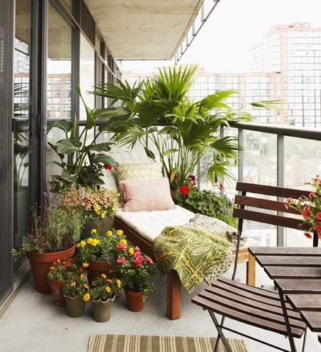Jungle Theme Terrace Decor Outdoors