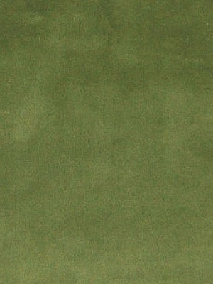 Greenhouse 74170 Spring Green Velvet Fabric
