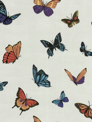 Graham & Brown FlutterBy - Pearl Wallpaper by Julien MacDonald