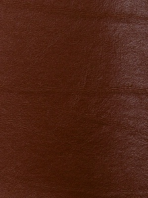 Fabricut Leather Fabric Bronze - Nutmeg 3469702