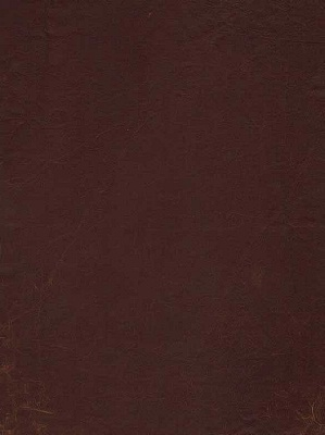 Andrew Martin Leather Fabric - Antiqued Hide - Brown