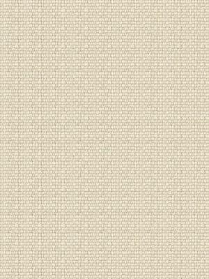 Ralph Lauren Fabric Weathered Linen Cream LFY24234F