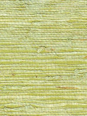 Phillip Jeffries Wallpaper - Extra-Fine Arrowroot - Lotus PJ 1969