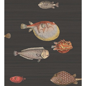 Cole & Son Wallpaper - Acquario - Black & Multi CS 97-10048