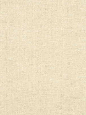 Threads Fabric - Jarah - Cream ED85084-120