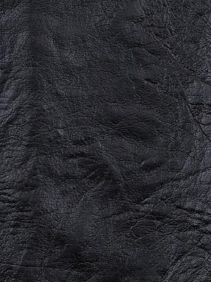 Fabricut Fabric - Iron - Ebony 3469503