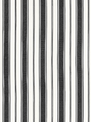 Schumacher Fabric - Branca Stripe - Noir 68310