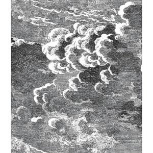 Cole & Son Wallpaper - Nuvolette - Black & White 97/2007
