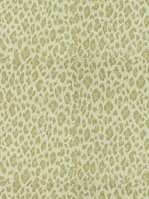 Kravet Fabric - 31382-123