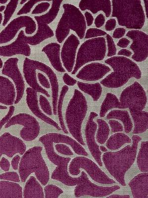 Clarke & Clarke Fabric - Florentine - Sorbet
