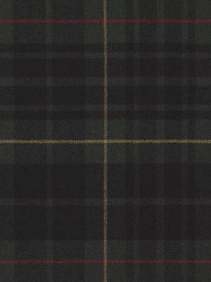 Ralph Lauren Fabric - WHITEHALL TARTAN - HUNTER LFY66034F