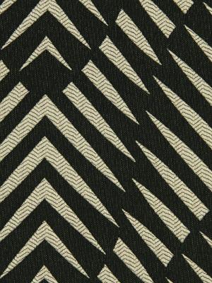 Robert Allen - Zebra Geo - Ink