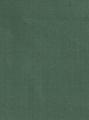 Fabricut Fabric - Douppioni Silk - Juniper 1909306