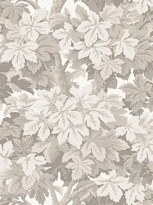Cole & Son Wallpaper - Great Vine - Stone 98_10047_CS