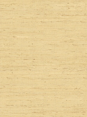 York Wallpaper - Grasscloth - CH7991