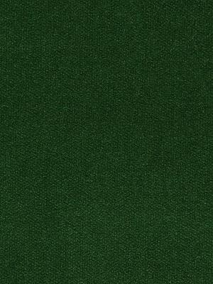 Pindler & Pindler Fabric - Legacy - Emerald Pdl 9672-Emerald