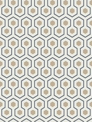 Cole & Son Wallpaper - Hicks Hexagon - Gilver/White/Black 95_3016_CS