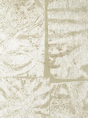 Winfield Thybony Wallpaper - Metallic Foil - WTO6193