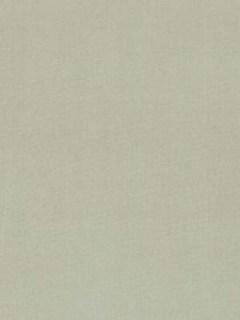 Robert Allen Fabric - Kerala - Silver Sage