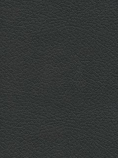 Schumacher Fabric - Brisa - Black Onyx 303-5749