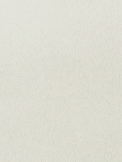 Scalamandre Fabric - Moda - Cream 36370-003
