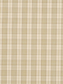 Robert Allen Fabric - Amsale - Green Tea