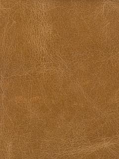 Kravet Fabric - HAUTE - CAMEL
