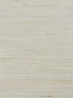 Scalamandre Wallpaper - Heavy Tightweave Jute - Sand G1196-001