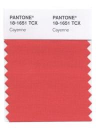 Pantone Cayenne Spring 2014 Color