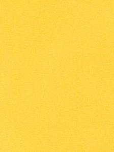Fabricut Fabric - Topaz - Forsythia 1018043