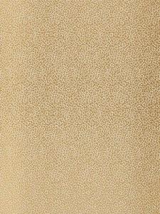 Schumacher Fabric - Syousha Silk - Champagne  2644521