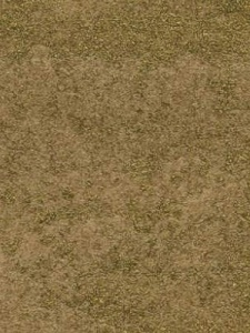 Maya Romanoff Wall Covering - Weathered Metals - Luxe Gold MR W56X10G