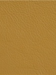 Kravet Leather Fabric - Rancho - Gold