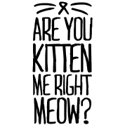 Are-You-Kitten-Me-Right-Meow