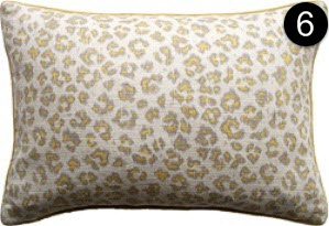 Pillow: Ryan Studio