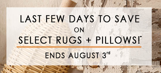 area rug and throw pillow sale