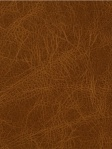 Fabricut Fabrics Outback - Molasses L-JUNIQUE_RED CLAY_0 Brown