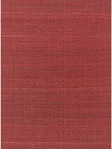 Chandra Hand-Woven Transitional Rug - AME-7704_Flat