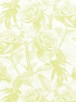 Clarke & Clarke Fabric and Wallpaper Empress Rose - Citrus
