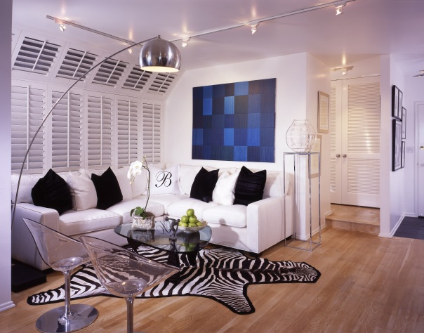 White Apartment Living Room Zebra Print Rug