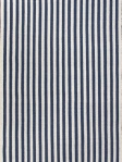 Jaipur  Stripe Area Rug Cabana Blue/Ivory Rug PLA03