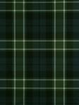 Robert Allen @ Home Plaid Glen - Navy Green Fabric