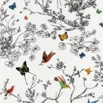 Schumacher Birds and Butterflies Multi on White Wallpaper