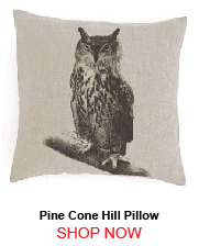Pine Cone Hill Hoot Decorative Pillow 22x22 207418