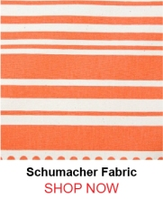 Schumacher Stripe Dot Fire Fabric